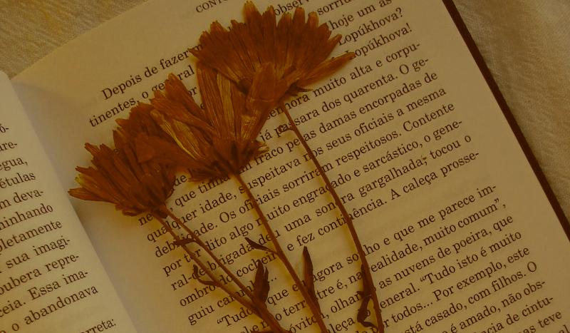 flor no livro.png